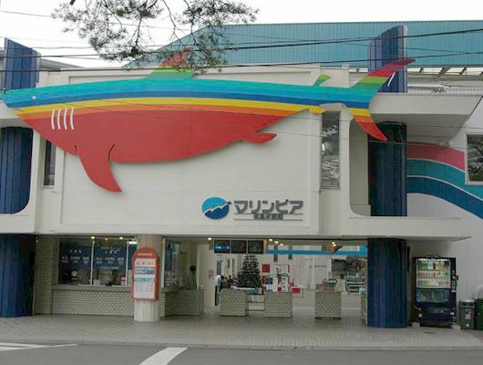 マリンピア松島水族館(2015年5月 閉館)