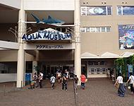 横浜・八景島シーパラダイス アクアリゾーツ