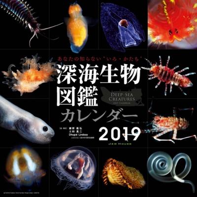 カレンダー深海生物図鑑2019を抽選で3名様にプレゼント!
