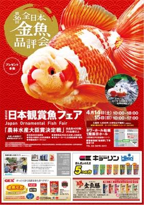 第36回 2018年日本観賞魚フェア入場券を抽選で30組60名様にプレゼント!