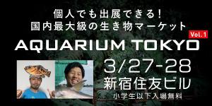 アクアリウム東京