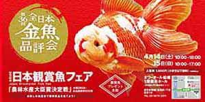 日本観賞魚フェア2018