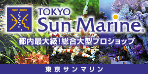 東京サンマリン