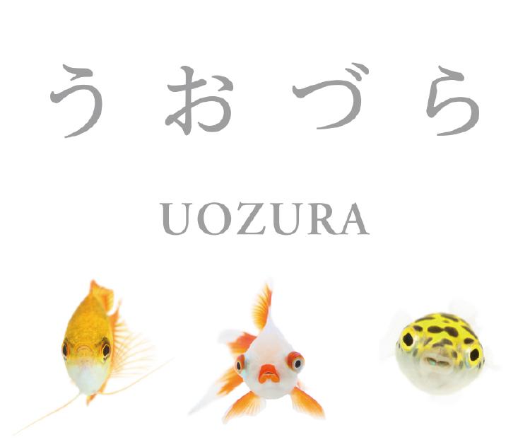 うおづら / UOZURA