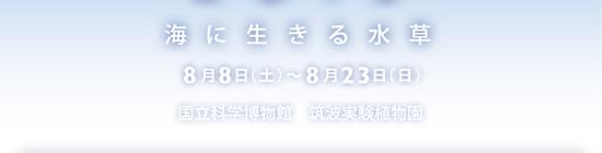 2015071602.jpg