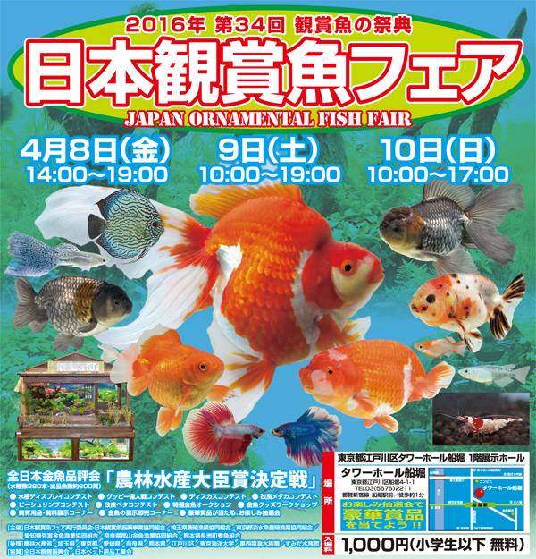 第34回 日本観賞魚フェア