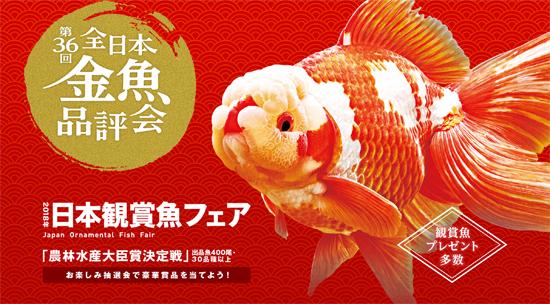 第36回 日本観賞魚フェア