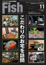 fフィッシュマガジン11月号