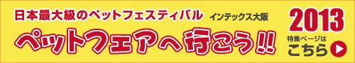 jpf13-bn01.jpg
