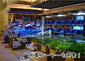 リミックス 春日井店