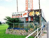 鈴木金魚店