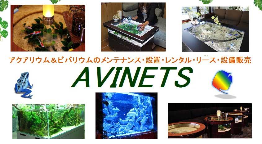 AVINETS
