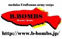 めだか販売店 B.BOMBS(ビーボムズ)
