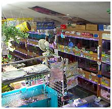 ひごペットフレンドリー 東淀川店