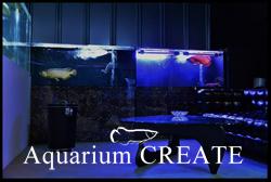 Aquarium CREATE(アクアリウムクリエイト)