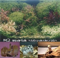 M2 aquarium(エムツーアクアリウム)