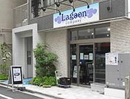 PICK UP 熱帯魚ショップ:Lagoon Company(ラゴーン カンパニー)