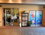 PICK UP 熱帯魚ショップ:アクアクイーン