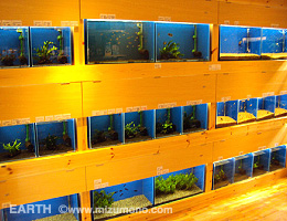 aquariumshop EARTHŹ��