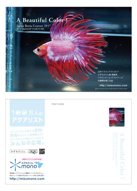 日本ベタコンテスト2017