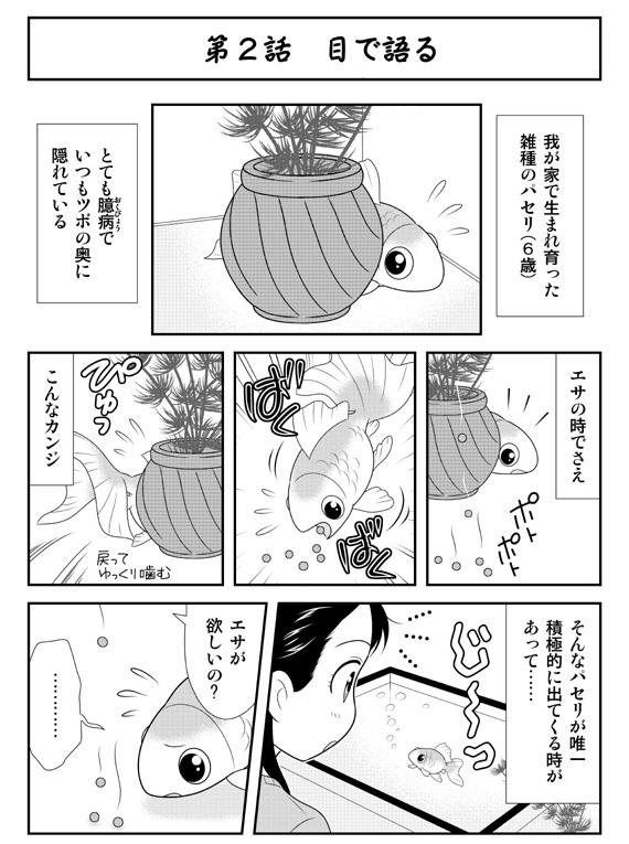 ダンスウィズ金魚ズ「第2話 目で語る」