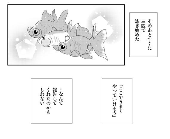 ダンスウィズ金魚ズ「第3話 金魚同士のおしゃべり」