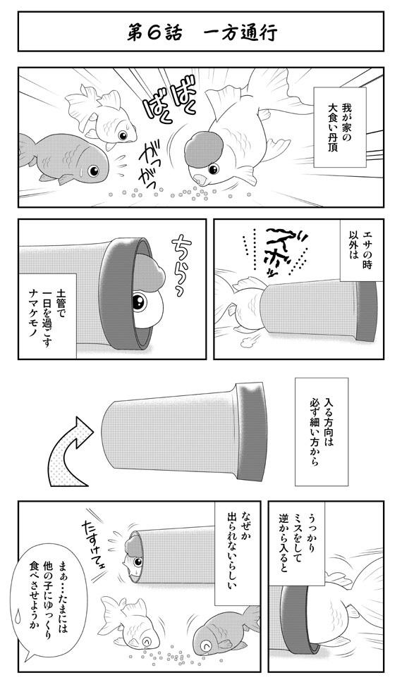 ダンスウィズ金魚ズ「第6話 一方通行」