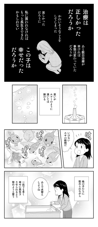 dwkingyo201812_112.jpg