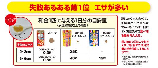 food01kot003.jpg