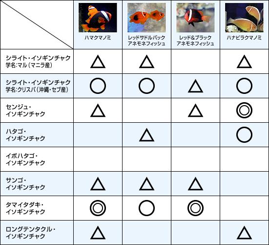 クマノミとイソギンチャクの相性チャート