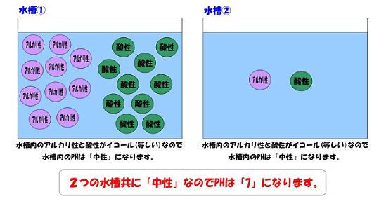 neon04_sis02.jpg