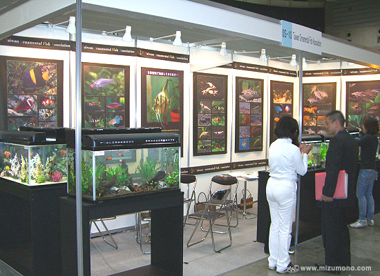Taiwan Ornamental Fish Association出展ブース