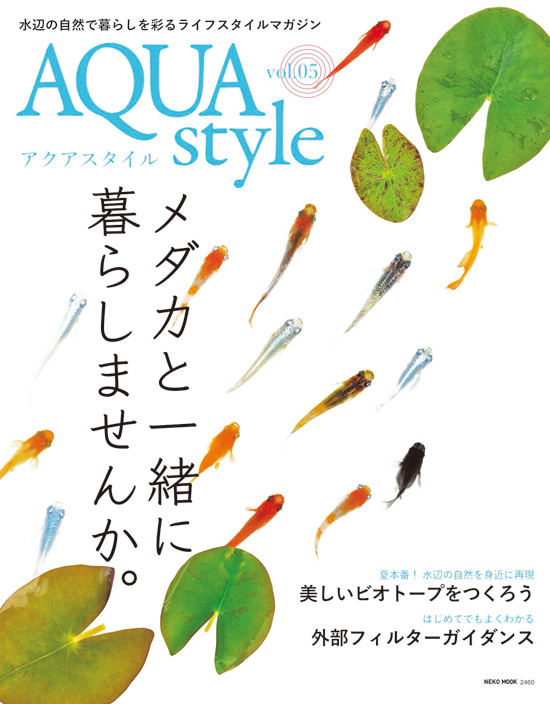 aquastyle05.jpg