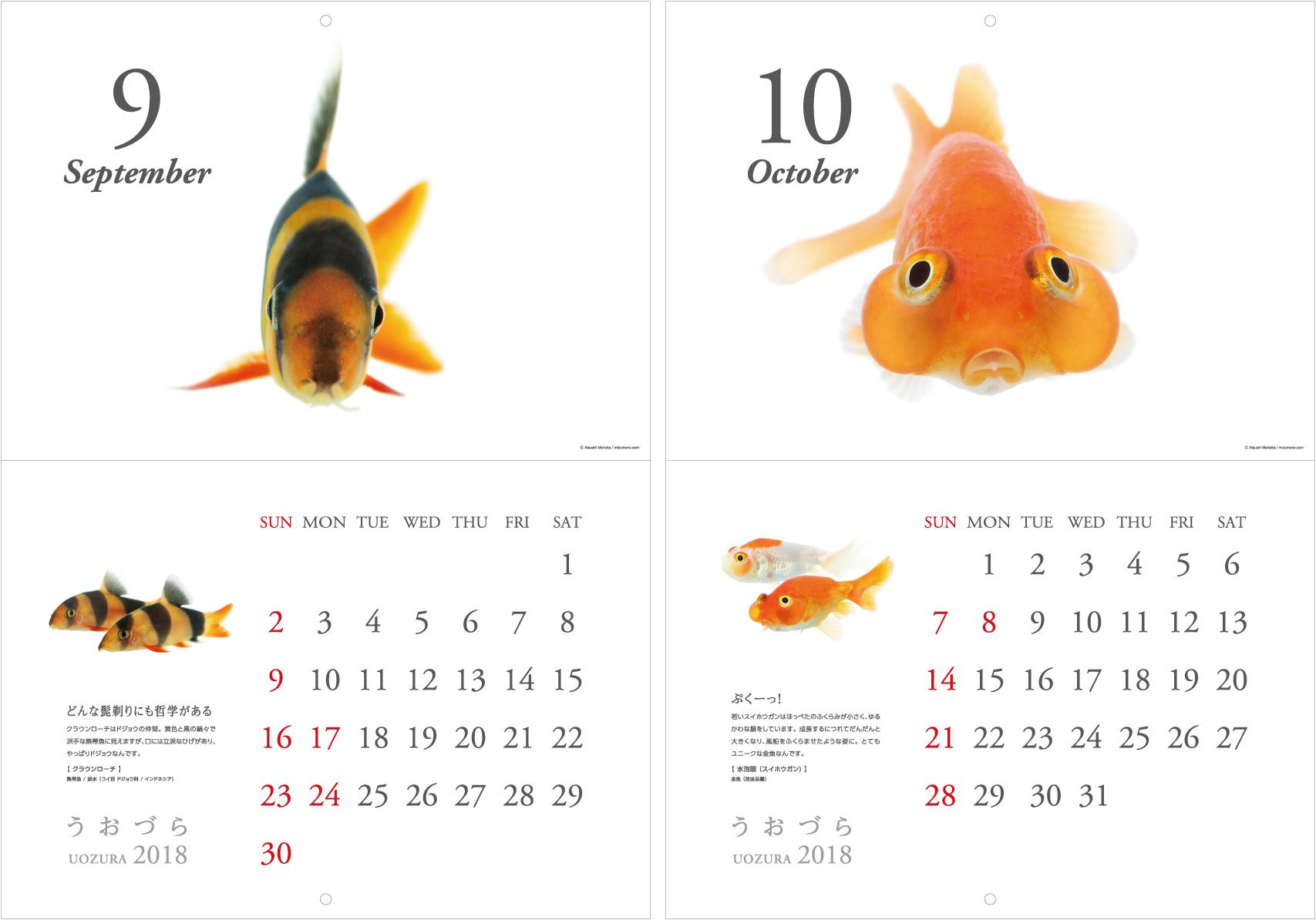 calendar2018_a03.jpg