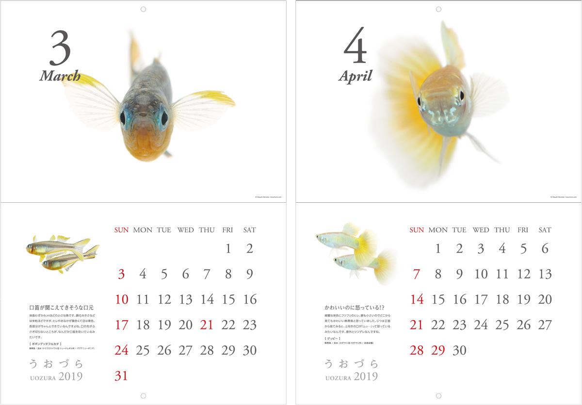 calendar2019_a04.jpg