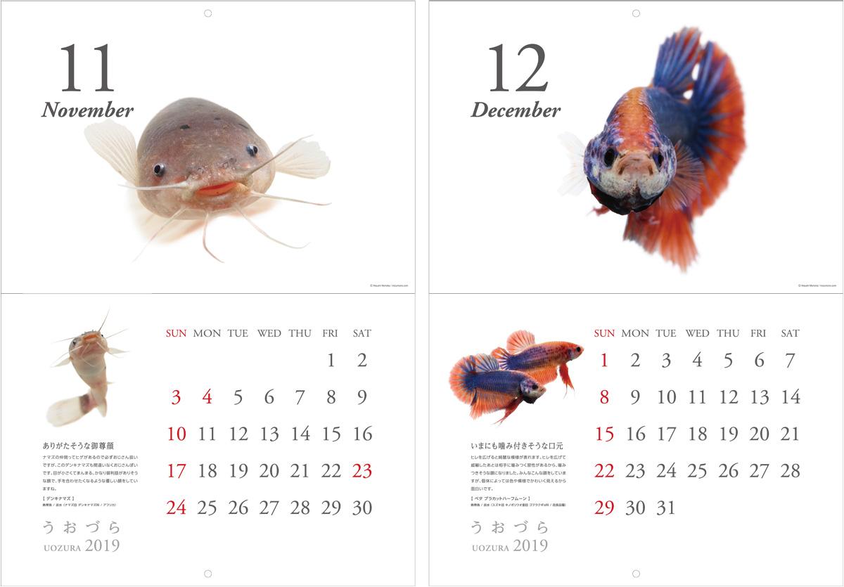 calendar2019_a08.jpg
