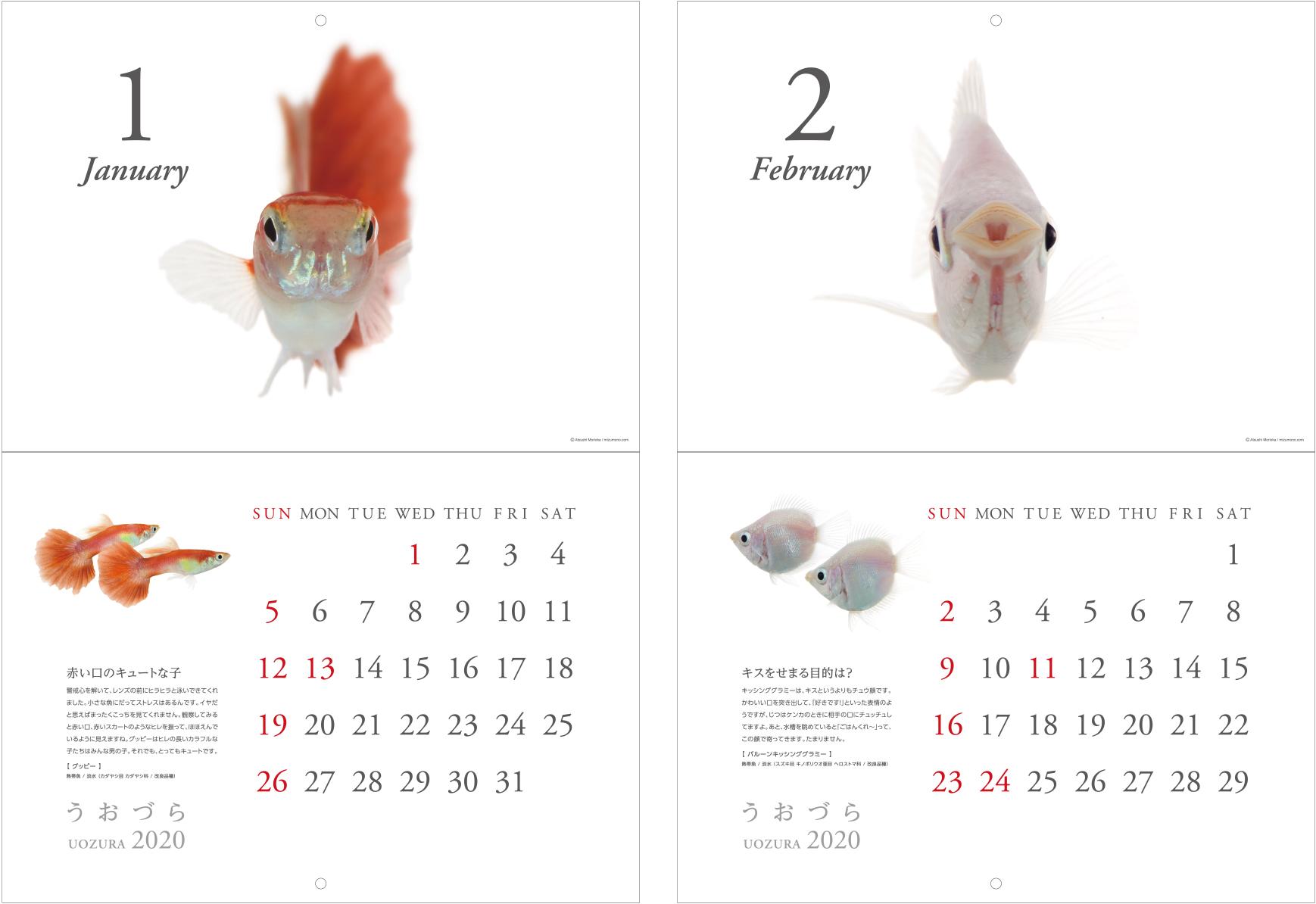calendar2020_a03.jpg