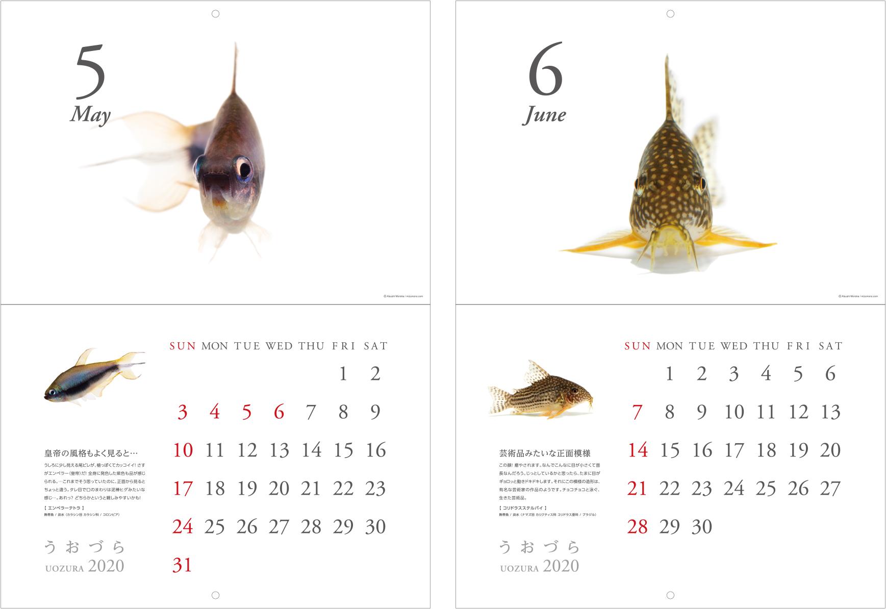 calendar2020_a05.jpg