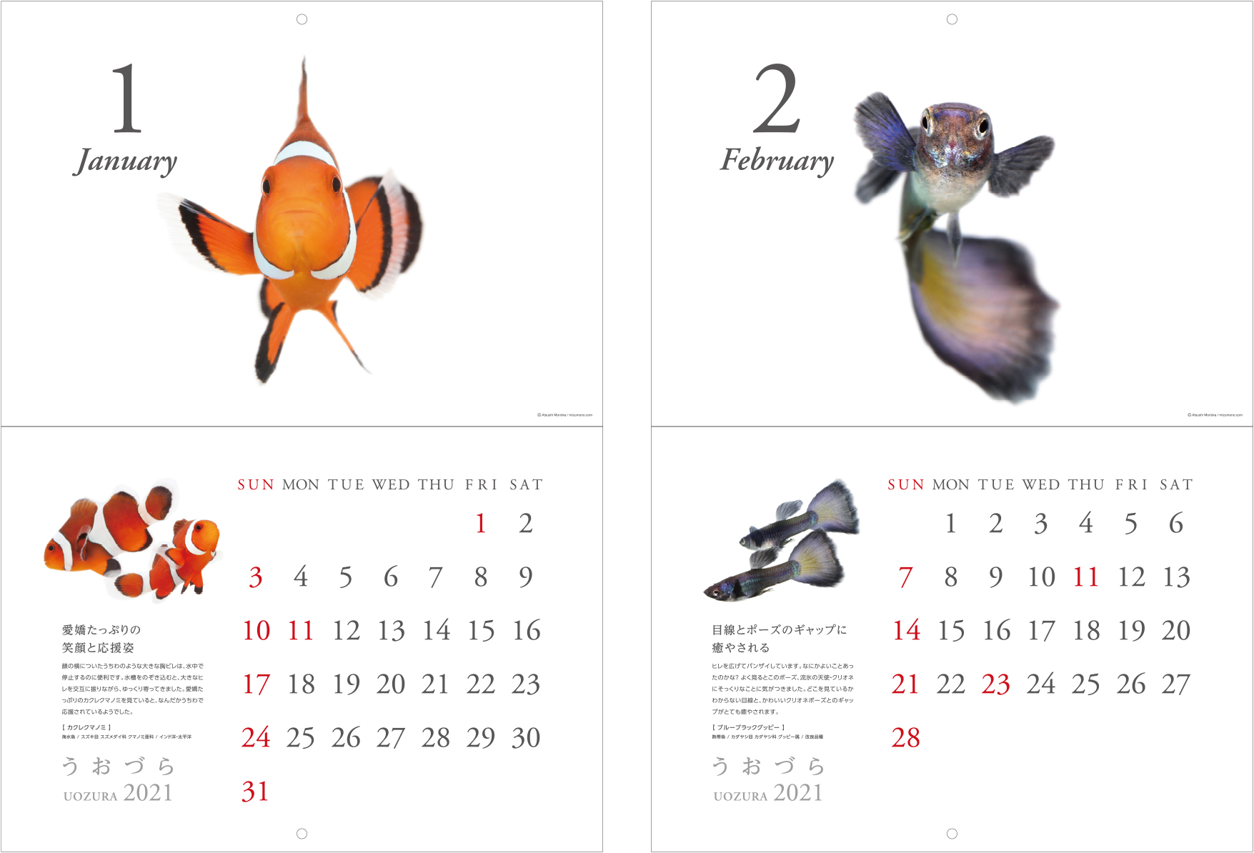 calendar2021_a03.jpg