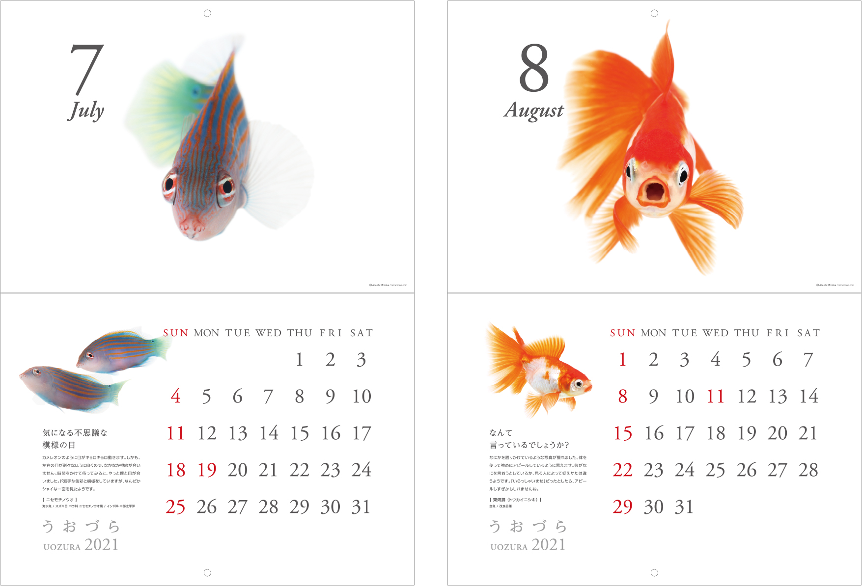 calendar2021_a06.jpg