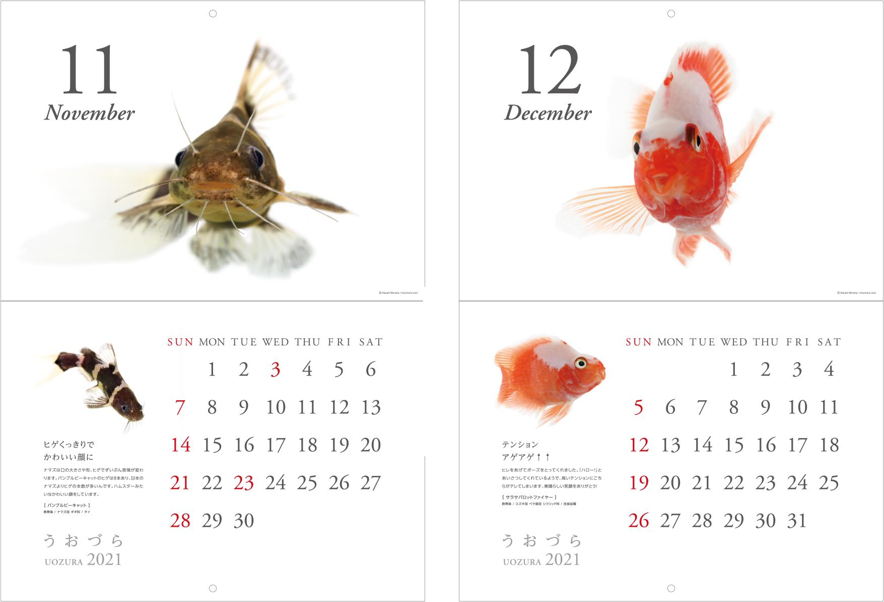 calendar2021_a08.jpg