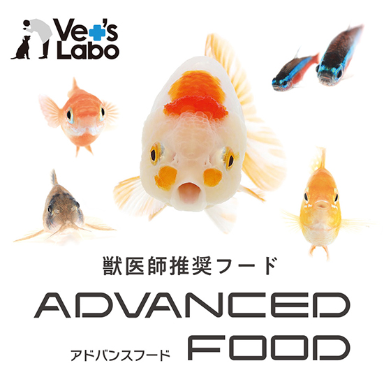 product_advancedfood200901.jpg