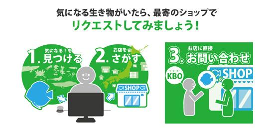 product_kamihata170813.jpg