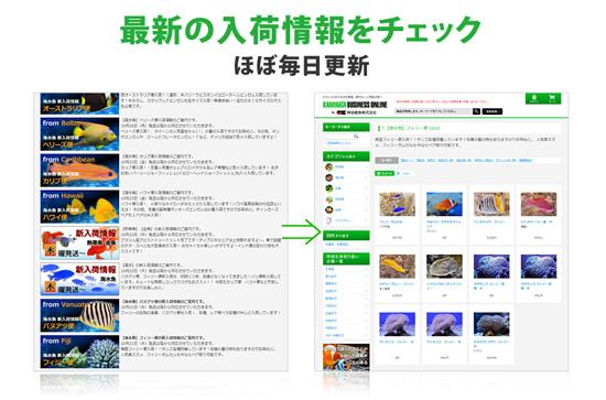 product_kamihata170815.jpg