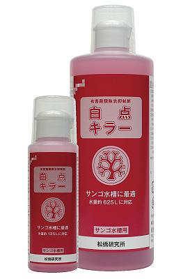 product_matsuhashi15022.jpg