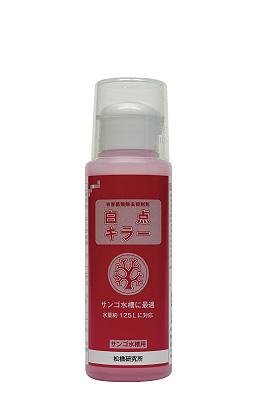 product_matsuhashi15024.jpg
