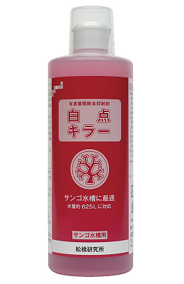 product_matsuhashi15025.jpg