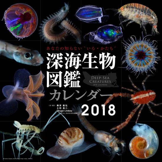 深海生物図鑑2018.jpg