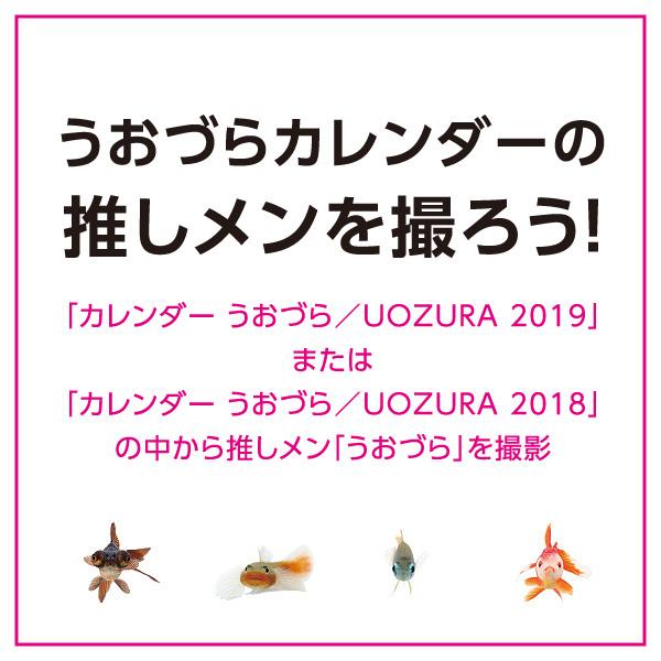 uozura_cp201902.jpg