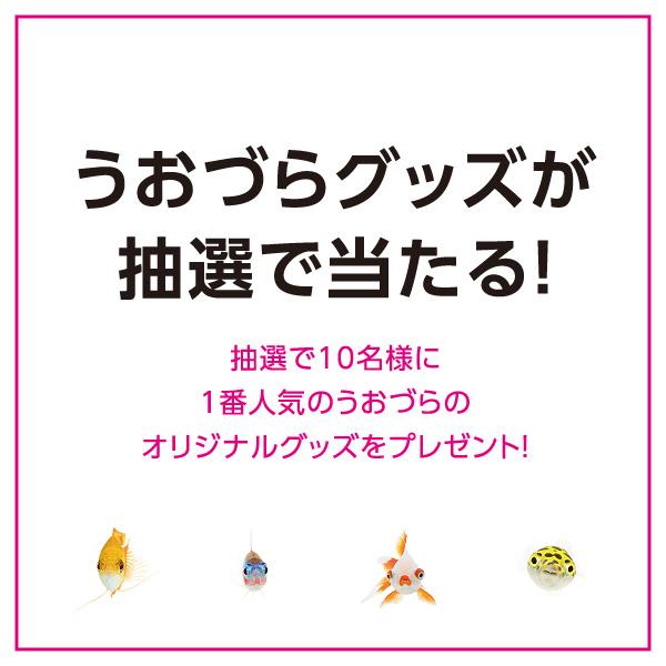 uozura_cp201905.jpg